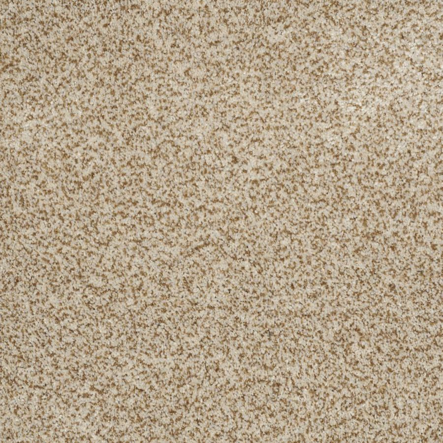STAINMASTER TruSoft Private Oasis II Cappuccino Textured Indoor Carpet