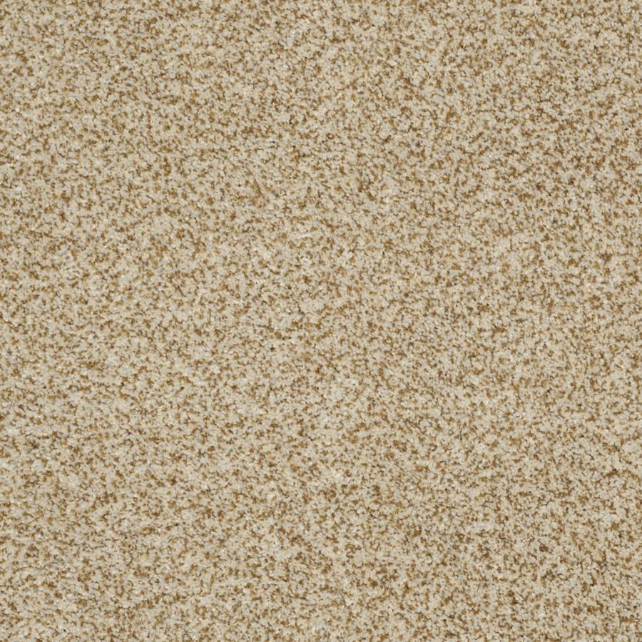 STAINMASTER TruSoft Private Oasis II Amber Textured Indoor Carpet