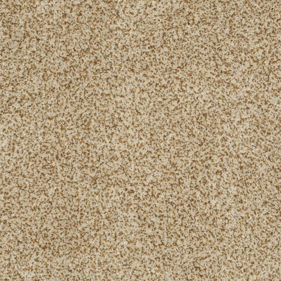 STAINMASTER TruSoft Private Oasis II 12-ft W Apollo Textured Interior Carpet
