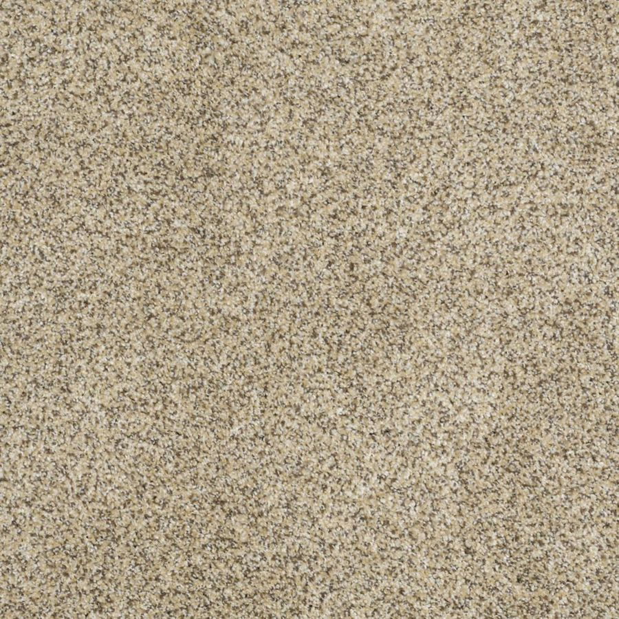 STAINMASTER TruSoft Private Oasis II Bordeaux Textured Interior Carpet