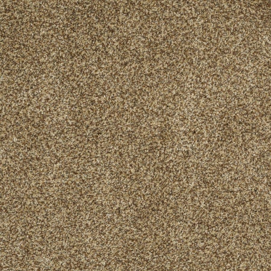STAINMASTER Trusoft Private Oasis II Tigereye Textured Interior Carpet