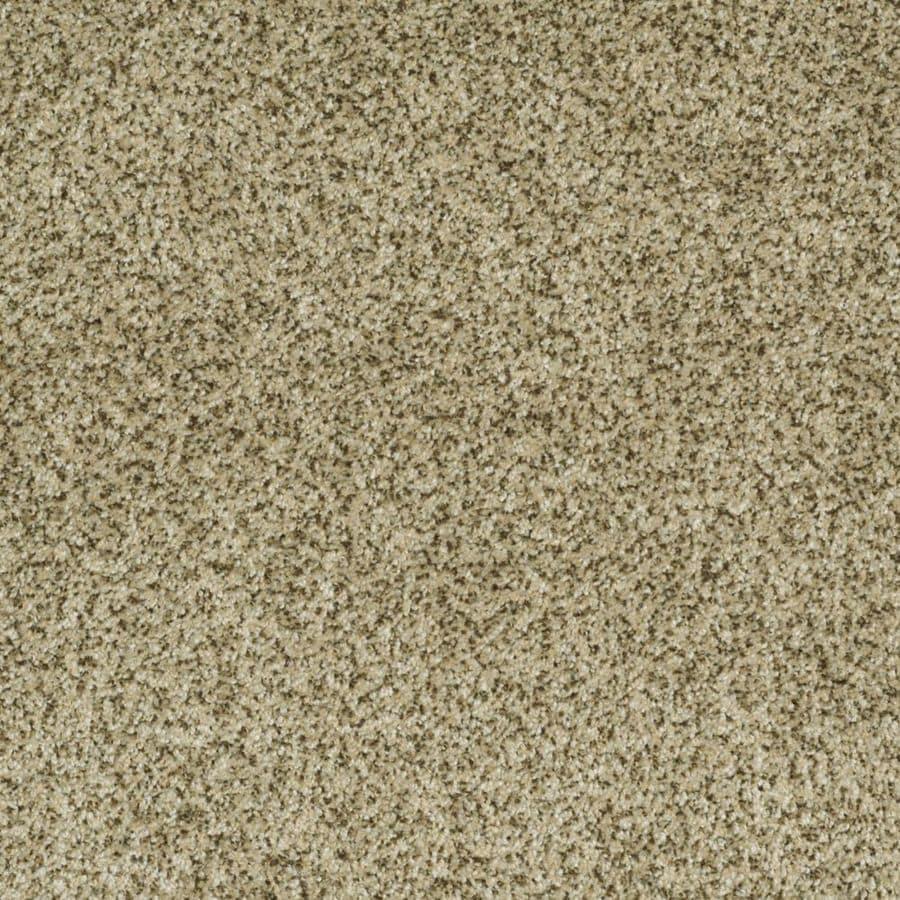 STAINMASTER Trusoft Private Oasis II Papillion Textured Interior Carpet