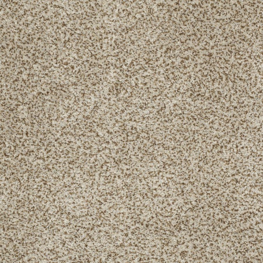 STAINMASTER TruSoft Private Oasis II 12-ft W x Cut-to-Length Solarius Textured Interior Carpet
