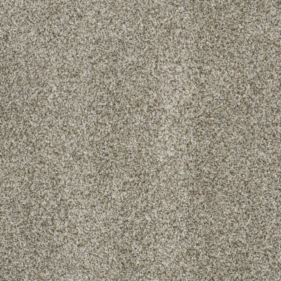 STAINMASTER TruSoft Private Oasis II Key West Textured Interior Carpet