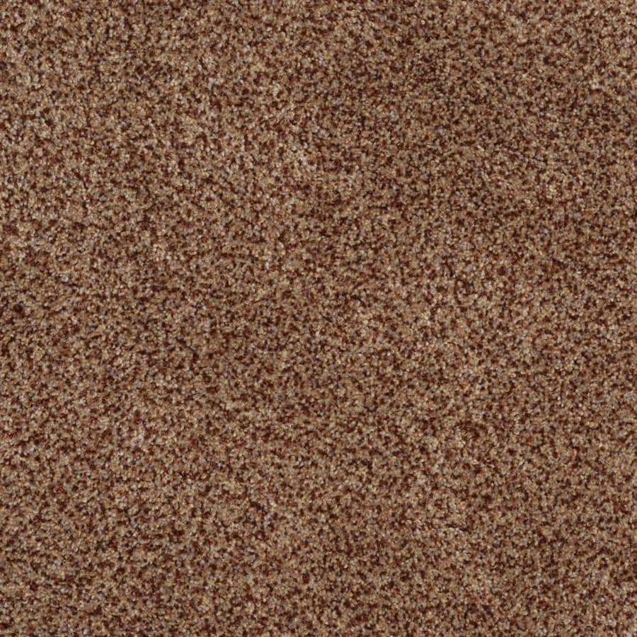 STAINMASTER TruSoft Private Oasis II 12-ft W x Cut-to-Length Montana Textured Interior Carpet