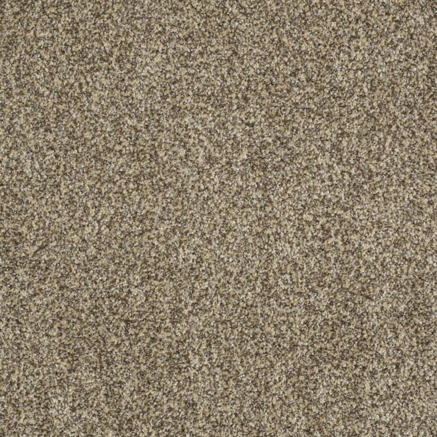 STAINMASTER TruSoft Private Oasis II Taupe Textured Indoor Carpet
