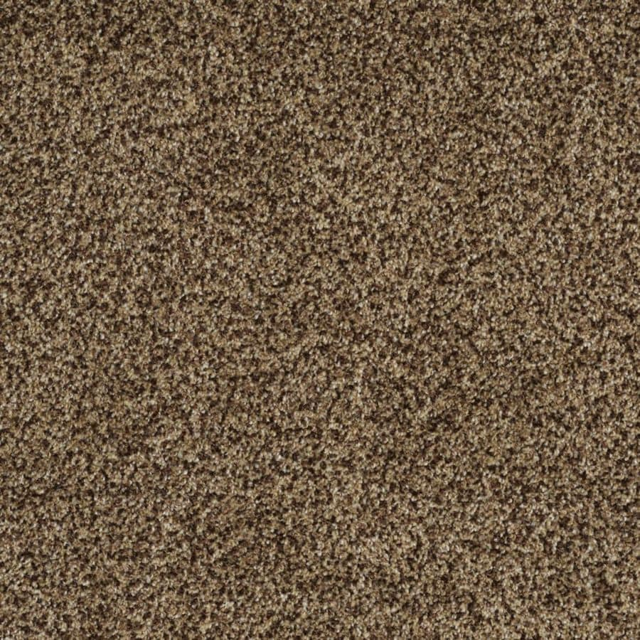 STAINMASTER TruSoft Private Oasis II 12-ft W x Cut-to-Length Supreme Textured Interior Carpet