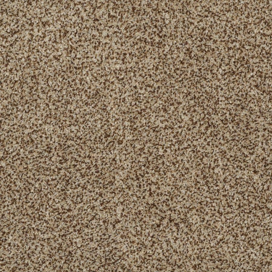 STAINMASTER TruSoft Private Oasis II 12-ft W Niagara Textured Interior Carpet
