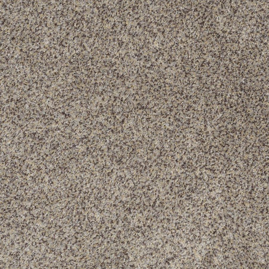 STAINMASTER TruSoft Private Oasis II Aztec Wave Textured Interior Carpet