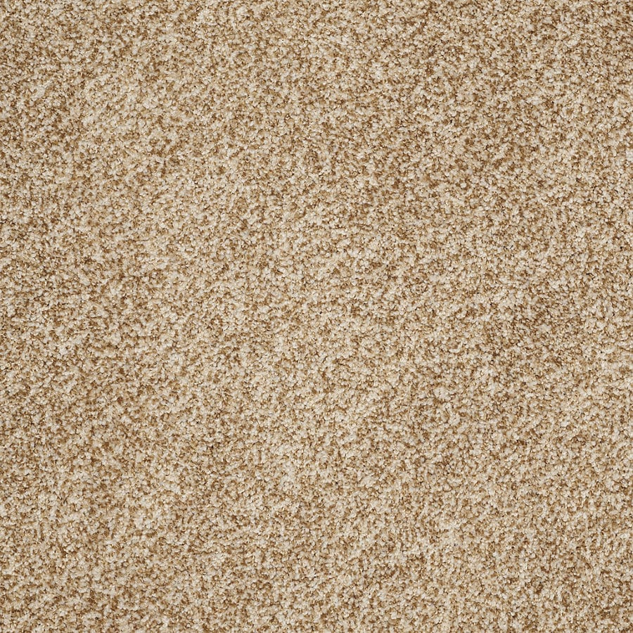 STAINMASTER TruSoft Peaceful Mood I Beach Drive Textured Interior Carpet