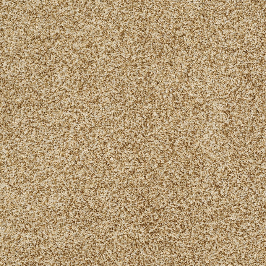 STAINMASTER TruSoft Peaceful Mood I 12-ft W Gold Rush Textured Interior Carpet