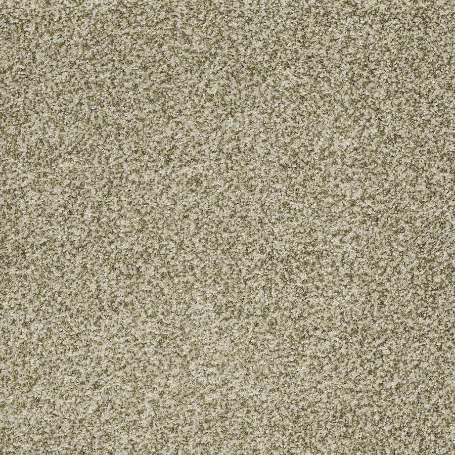 STAINMASTER TruSoft Peaceful Mood I Spring Grass Textured Indoor Carpet