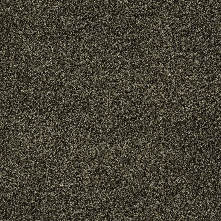 STAINMASTER TruSoft Peaceful Mood I Cypress Textured Indoor Carpet