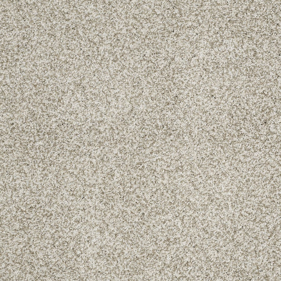 STAINMASTER TruSoft Peaceful Mood I Modern Gray Textured Interior Carpet