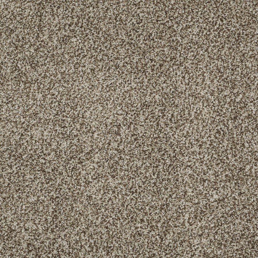 STAINMASTER TruSoft Peaceful Mood I Storm Cloud Textured Interior Carpet