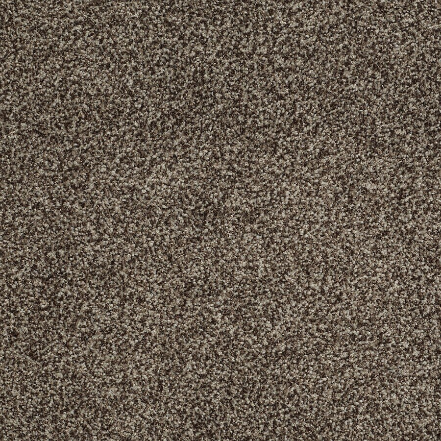 STAINMASTER TruSoft Peaceful Mood I Worn Pewter Textured Interior Carpet