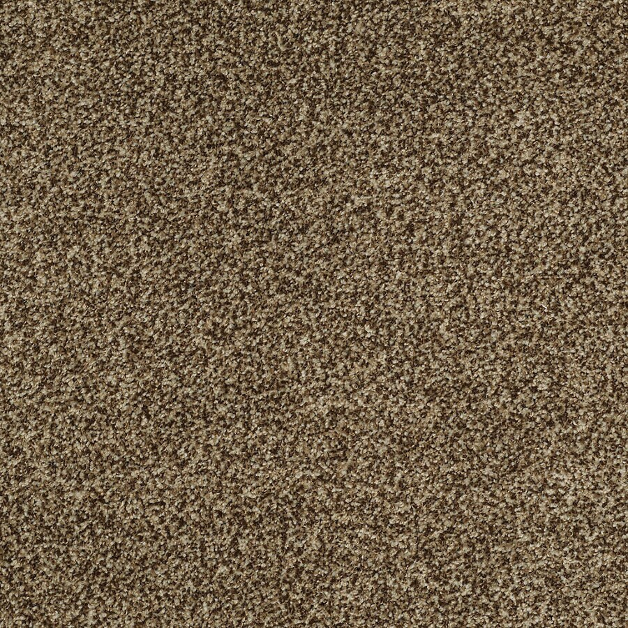 STAINMASTER TruSoft Peaceful Mood I 12-ft W Seacliff Textured Interior Carpet