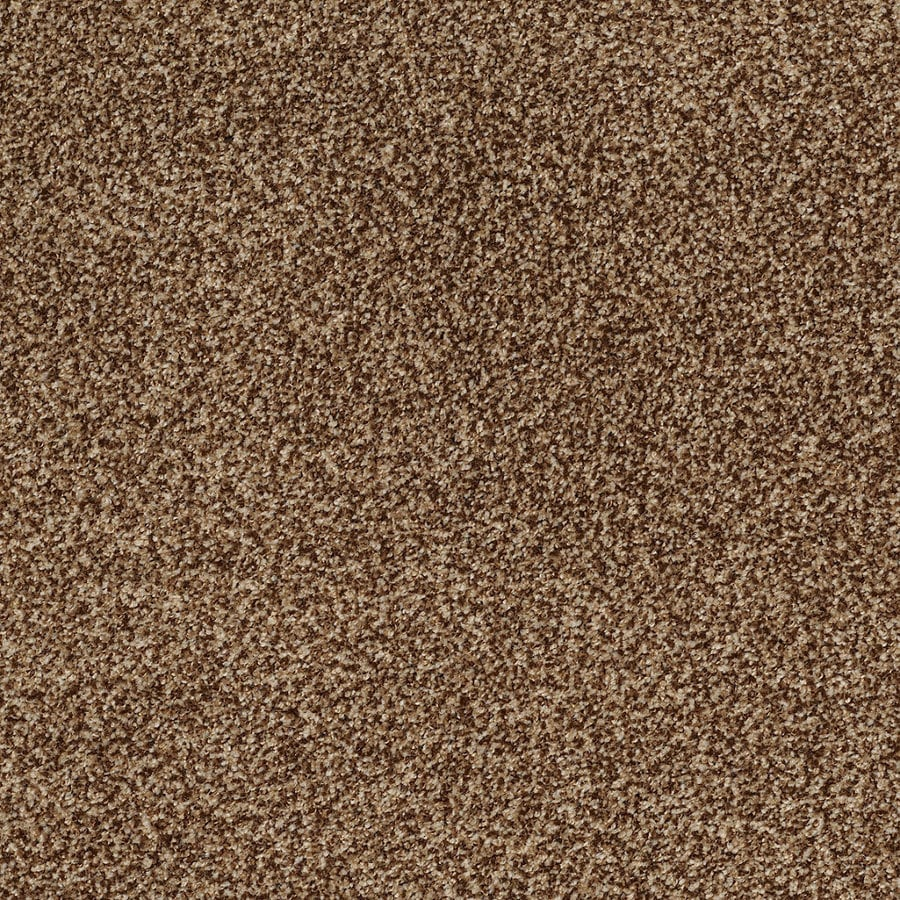 STAINMASTER TruSoft Peaceful Mood I 12-ft W Rustic Textured Interior Carpet
