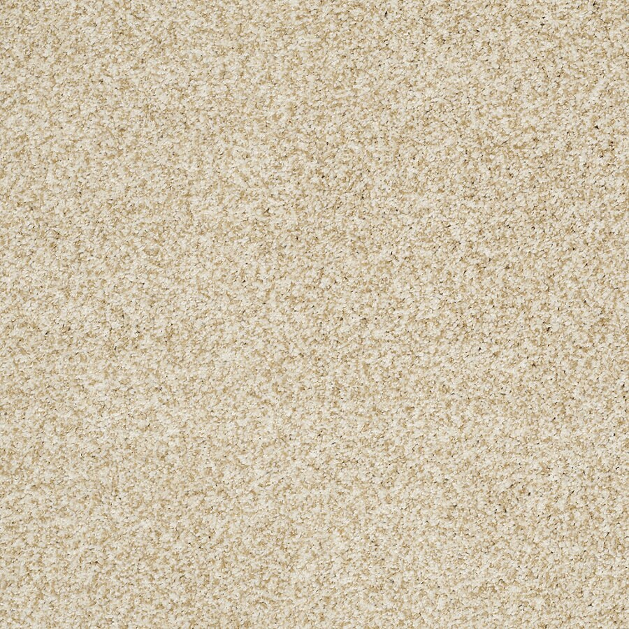 STAINMASTER TruSoft Peaceful Mood II 12-ft W Barely There Textured Interior Carpet