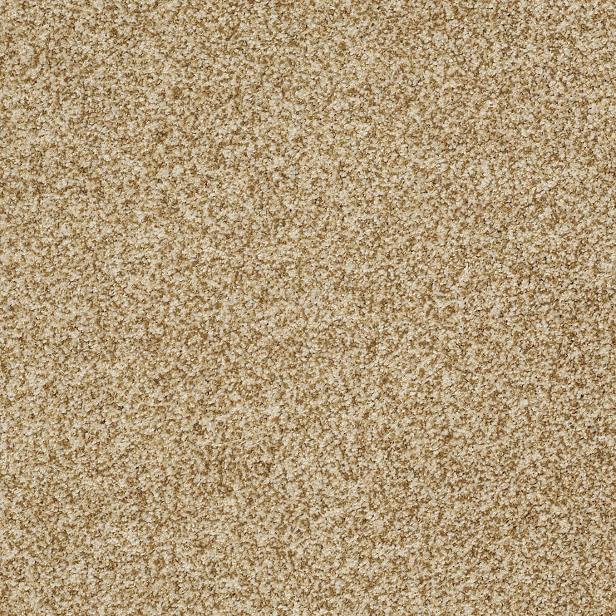 STAINMASTER TruSoft Peaceful Mood II 12-ft W Amber Glow Textured Interior Carpet