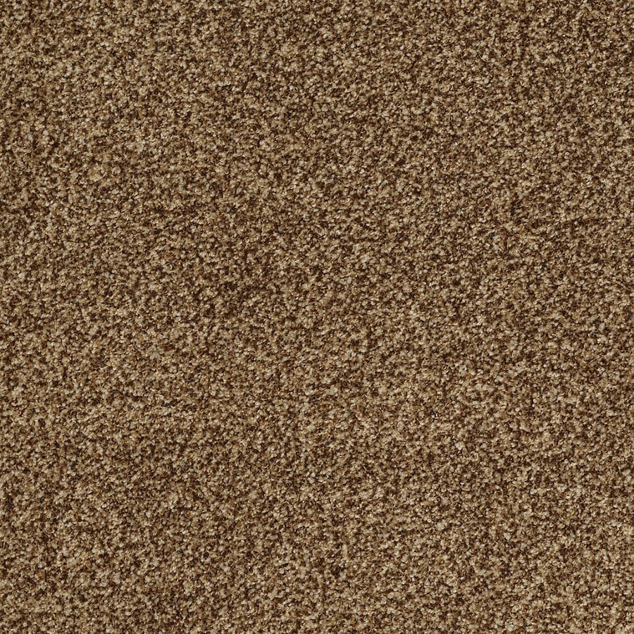 STAINMASTER Trusoft Peaceful Mood II Cocoa Pecan Textured Interior Carpet
