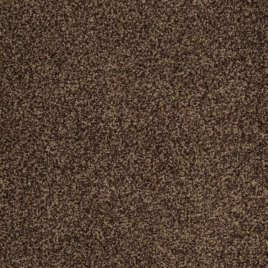 STAINMASTER TruSoft Peaceful Mood II 12-ft W Boulevard Textured Interior Carpet