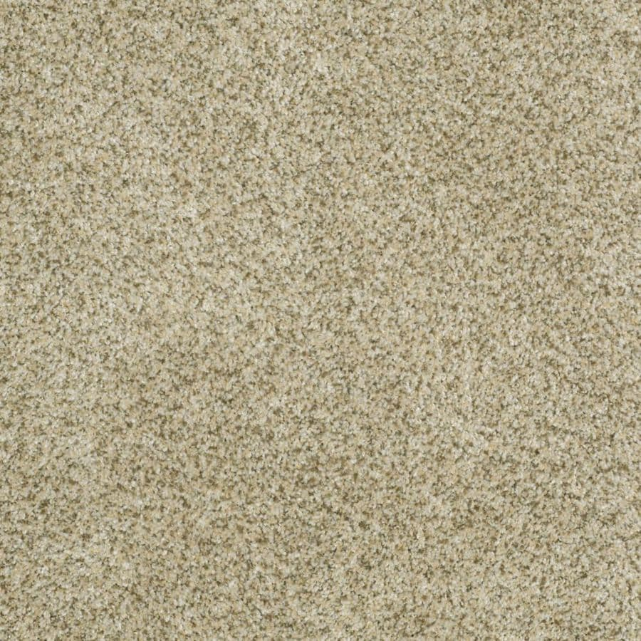 STAINMASTER TruSoft Private Oasis III Sea Foam Textured Indoor Carpet