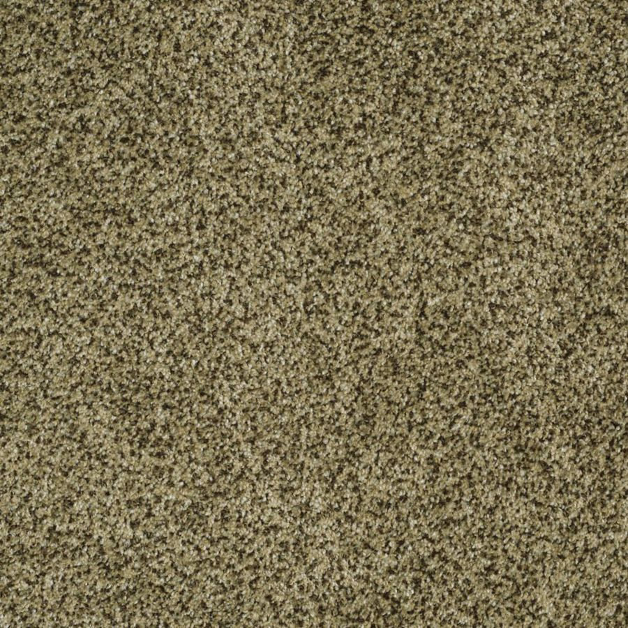 STAINMASTER TruSoft Private Oasis III 12-ft W x Cut-to-Length Verde Textured Interior Carpet