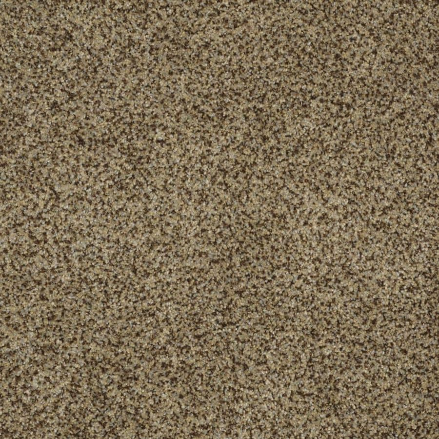 STAINMASTER Trusoft Private Oasis III Bahia Textured Interior Carpet