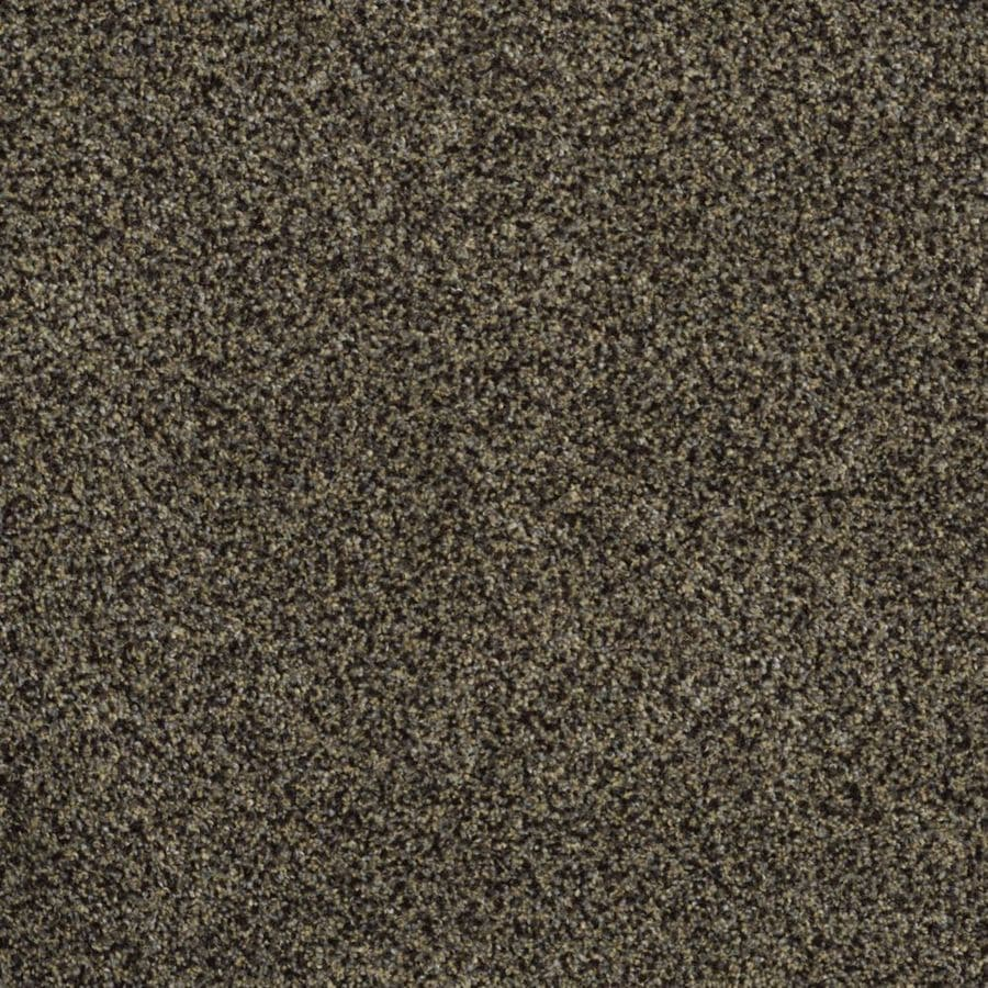 STAINMASTER Trusoft Private Oasis III Star Beach Textured Interior Carpet