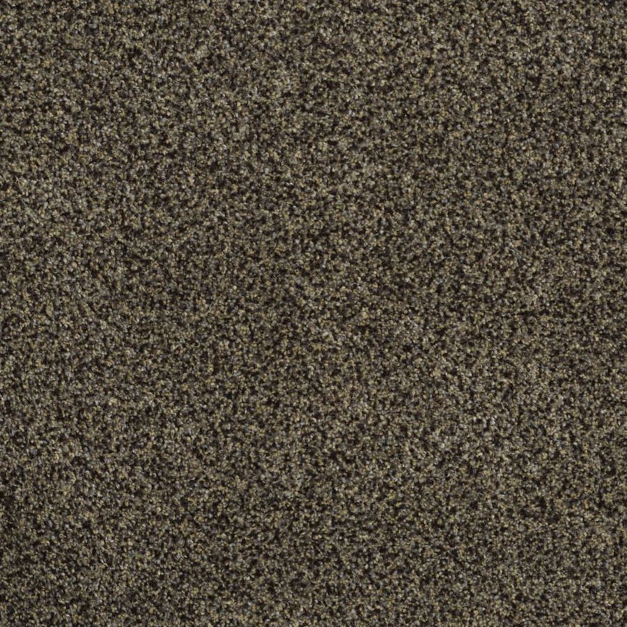 STAINMASTER TruSoft Private Oasis III Star Beach Textured Indoor Carpet
