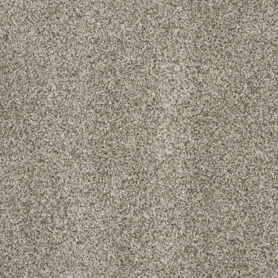 STAINMASTER TruSoft Private Oasis III 12-ft W Key West Textured Interior Carpet