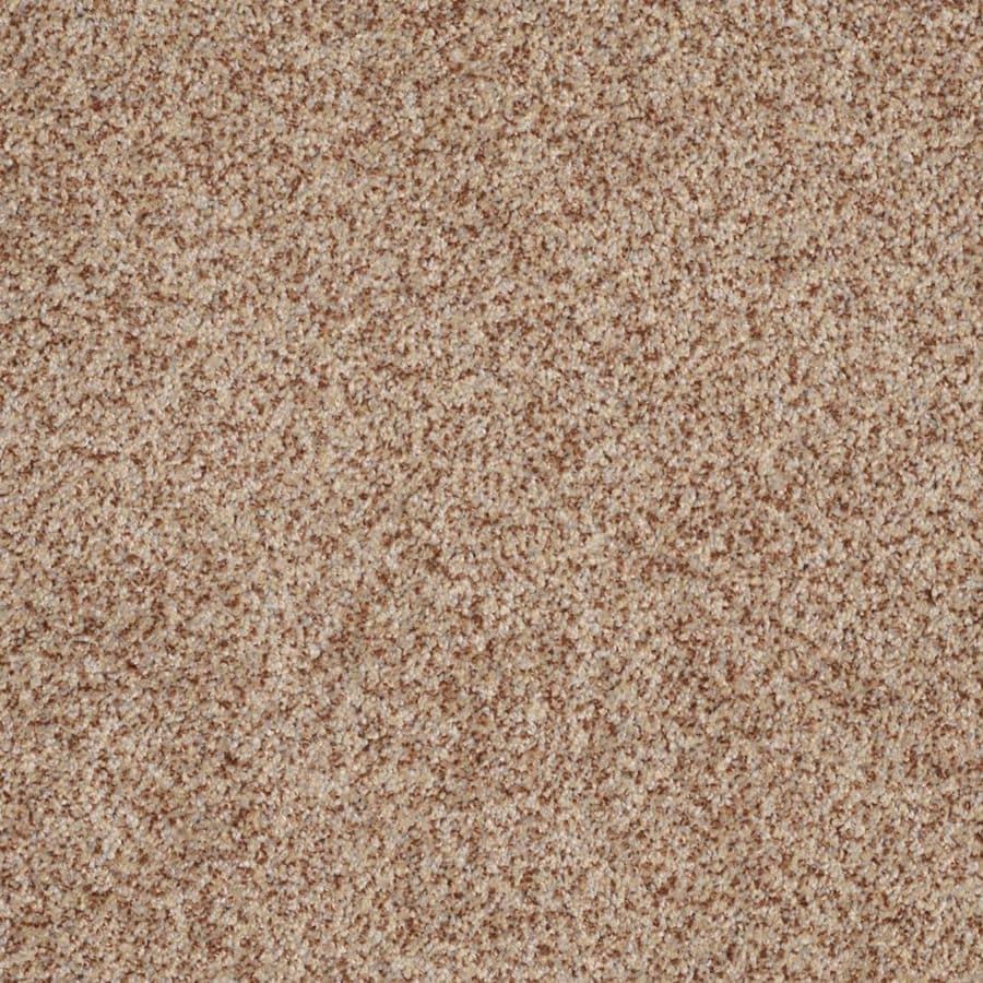 STAINMASTER Trusoft Private Oasis III Florence Textured Interior Carpet