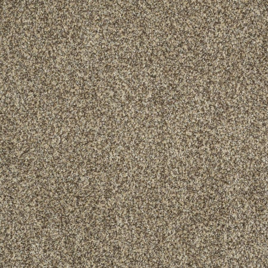 STAINMASTER Trusoft Private Oasis III Taupe Textured Interior Carpet