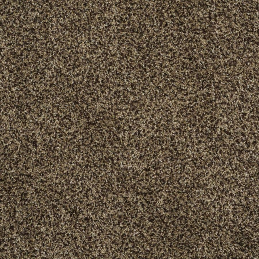 STAINMASTER TruSoft Private Oasis III 12-ft W x Cut-to-Length Appia Textured Interior Carpet