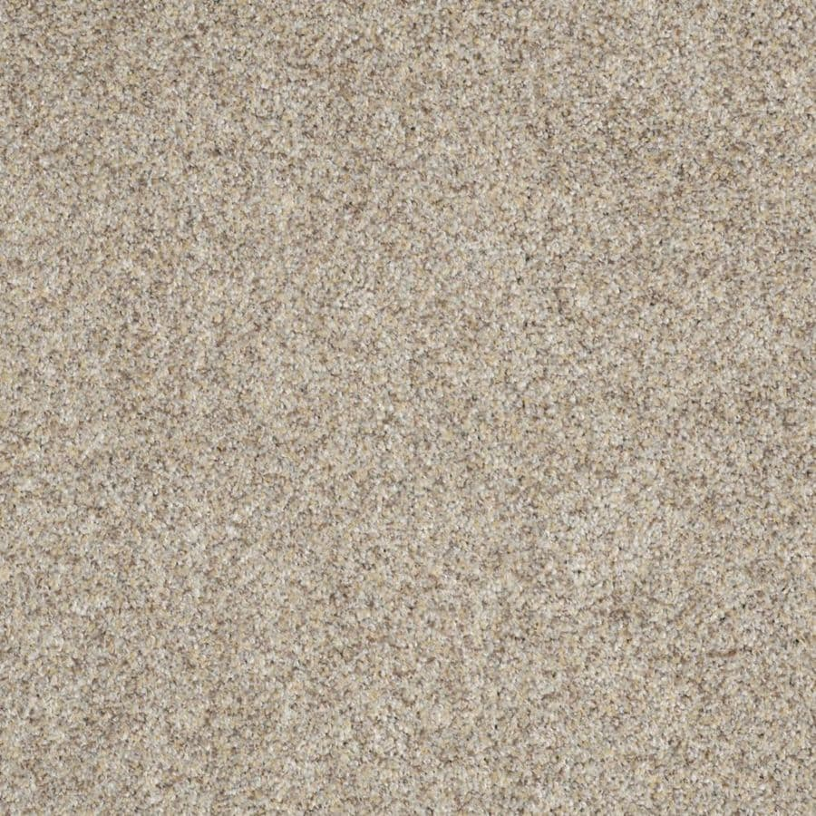 STAINMASTER TruSoft Private Oasis III 12-ft W x Cut-to-Length Antico Textured Interior Carpet