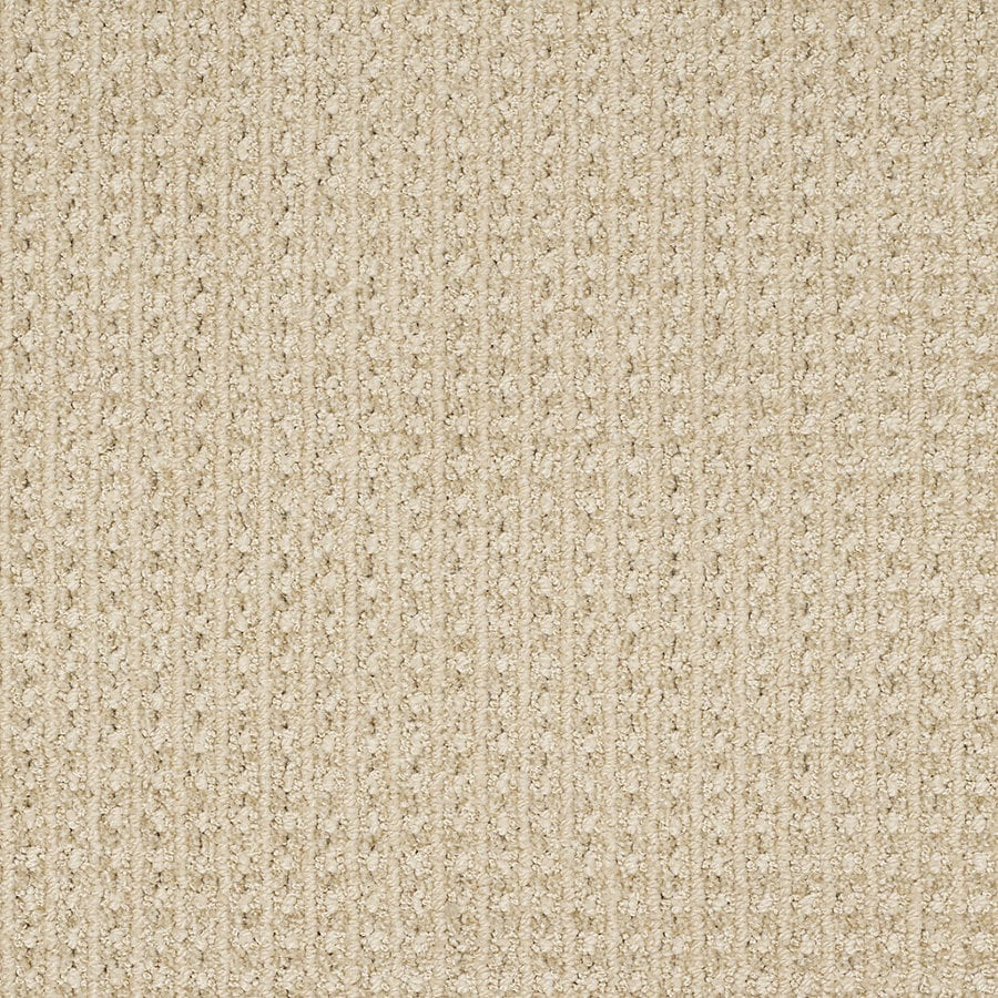 STAINMASTER Trusoft Rising Star Barely There Berber/Loop Interior Carpet