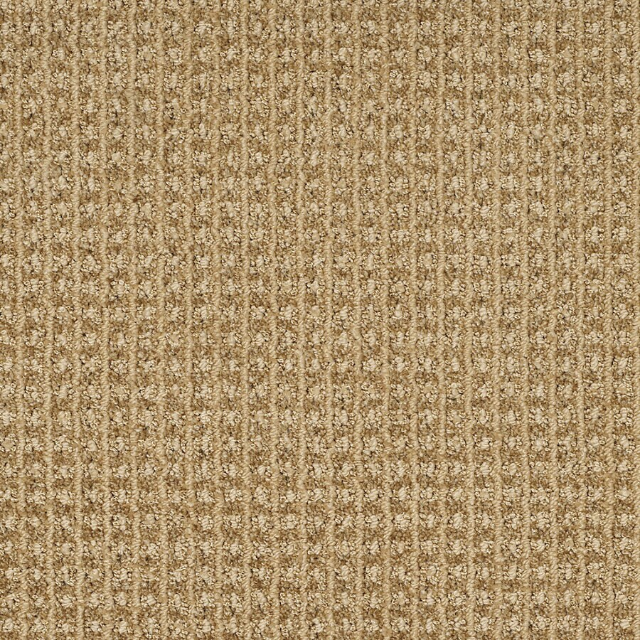 STAINMASTER TruSoft Rising Star 12-ft W Amber Glow Berber/Loop Interior Carpet