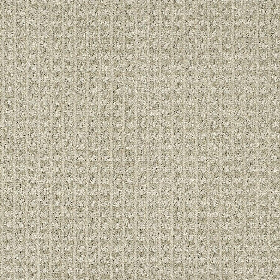STAINMASTER TruSoft Rising Star Mild Envy Berber/Loop Interior Carpet
