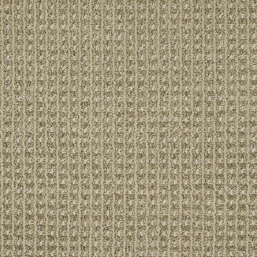 STAINMASTER TruSoft Rising Star Spring Grass Berber/Loop Interior Carpet