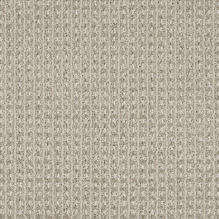 STAINMASTER TruSoft Rising Star Modern Gray Berber Indoor Carpet