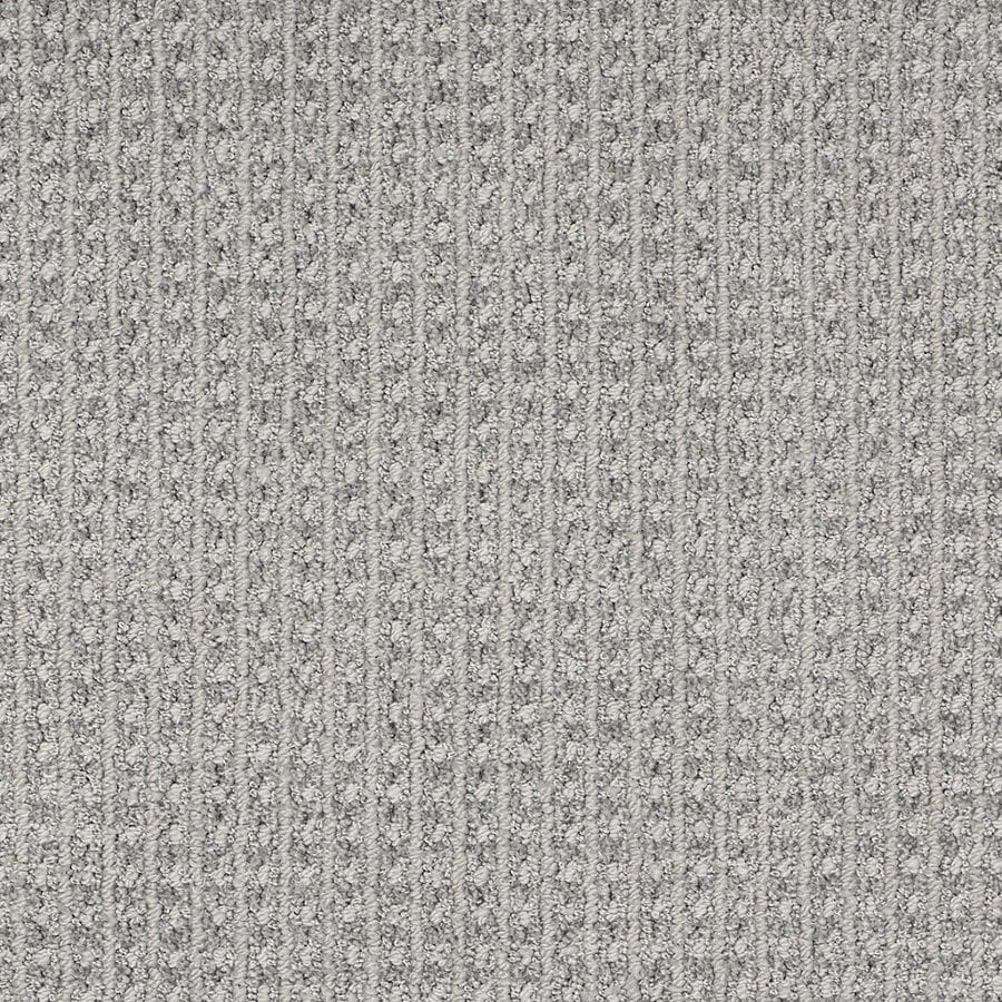 STAINMASTER Trusoft Rising Star Silver Lake Berber/Loop Interior Carpet