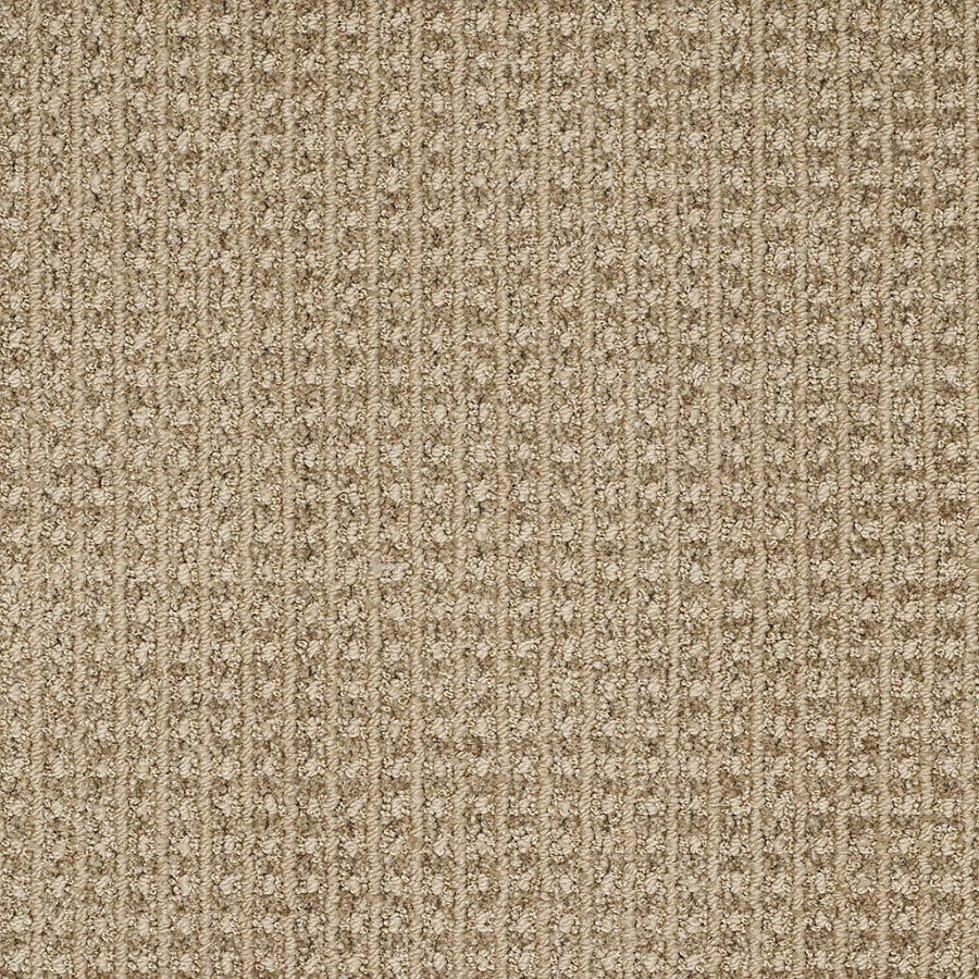 STAINMASTER TruSoft Rising Star Light Mocha Berber Indoor Carpet