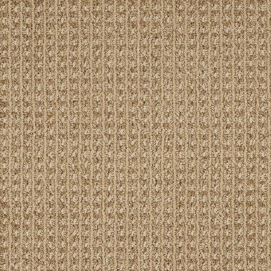 STAINMASTER TruSoft Rising Star Great Plains Berber/Loop Interior Carpet