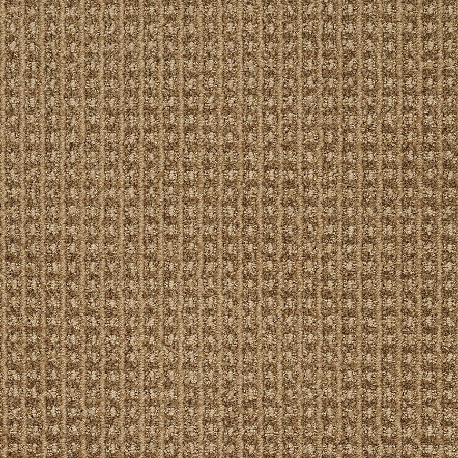 STAINMASTER TruSoft Rising Star Rocky Trail Berber Indoor Carpet