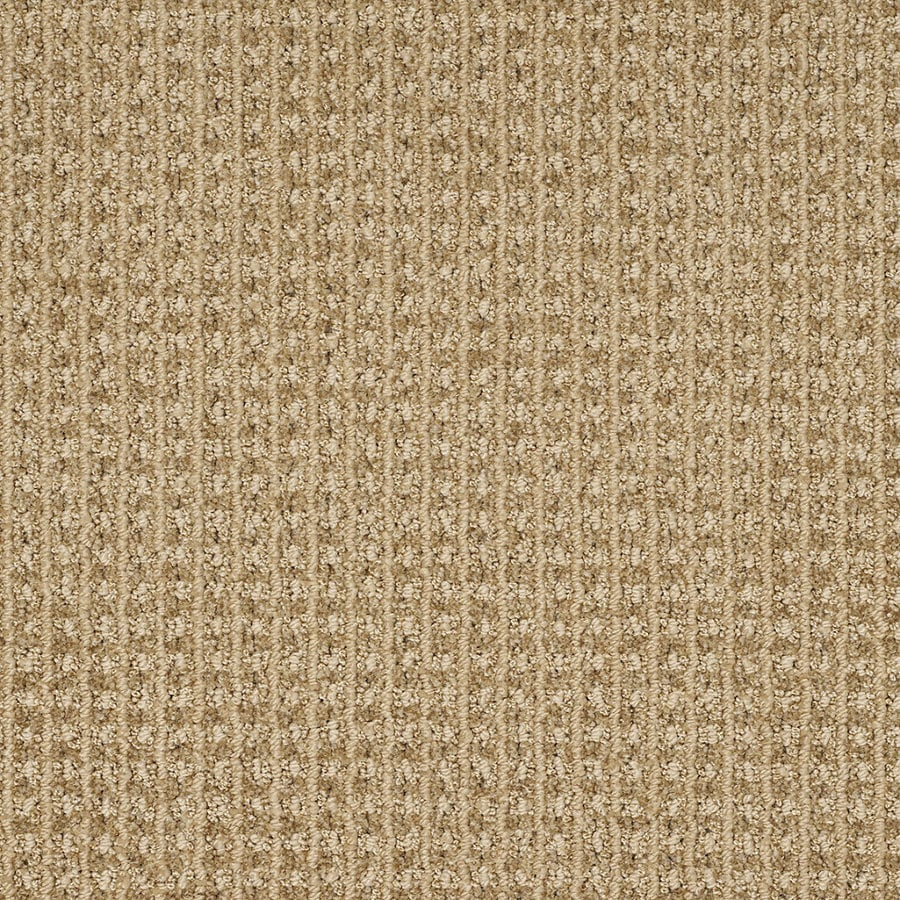 STAINMASTER TruSoft Rising Star 12-ft W Tan Wash Berber/Loop Interior Carpet