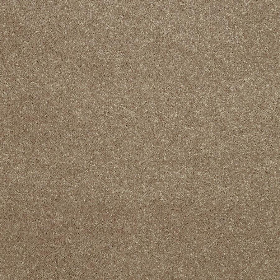 Shaw 12-ft W Brown/Tan Textured Interior Carpet