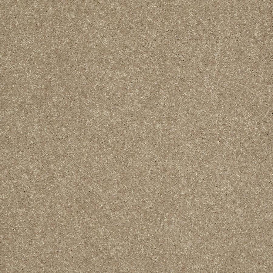 Shaw Yellow/Gold Textured Interior Carpet