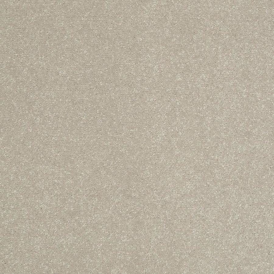 Shaw 15-ft W Cream/Beige/Almond Textured Interior Carpet