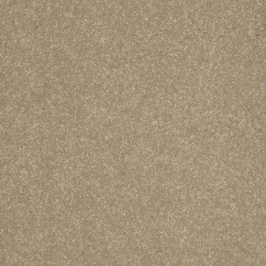 Shaw Gold Textured Indoor Carpet